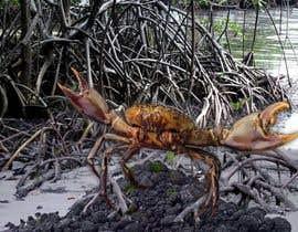 Nro 21 kilpailuun Australian Mud Crab käyttäjältä vibersol