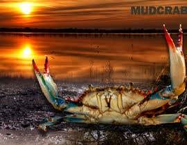 Nro 66 kilpailuun Australian Mud Crab käyttäjältä dulhanindi