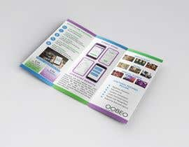 nº 3 pour Update a brochure and Tradeshow Booth to have the same look/feel as my website par thranawins