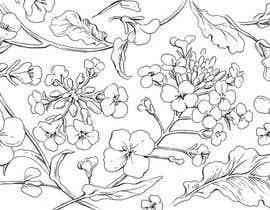 nº 20 pour Illustrate Rapeseed flowers par lausta