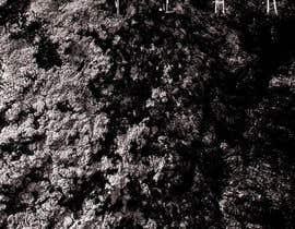 "nº 16 pour I need cover artwork for my song ""Fear"" par juandaniel18"