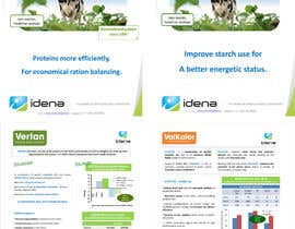 #17 cho Re size these 2 brochures to be printed in A4 size bởi vs47