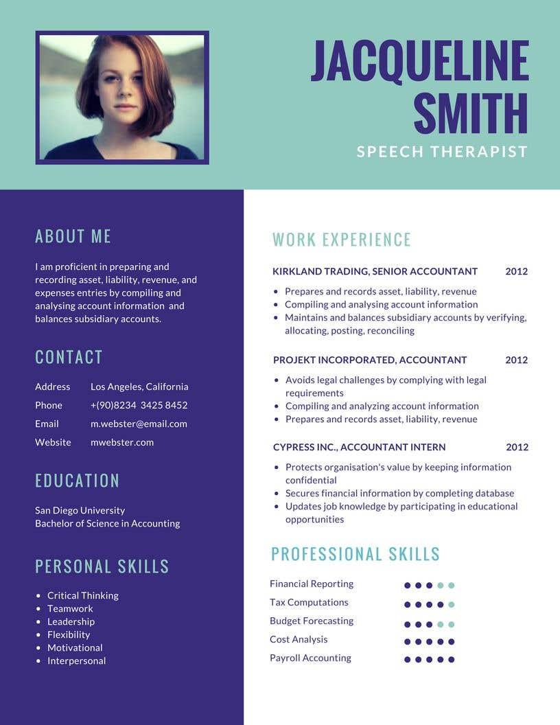 Entry #9 by Akhi1K for Infographic CV / Resume  | Freelancer