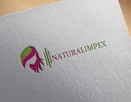 #51 for Design a Logo for an Natural indian human hair exporter company website. by Design2018