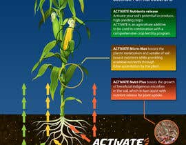 #12 for Nutrient flow illustration by jbktouch