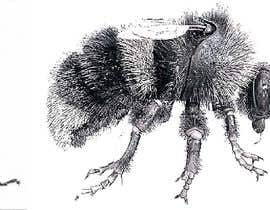 #3 for i need a 2D drawing of bumble bee insect by mf19392