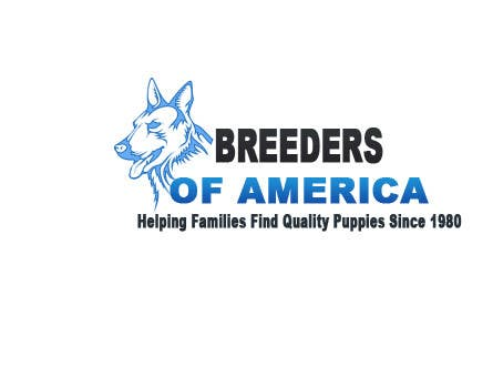 Contest Entry #72 for Logo Design for Breeders of America