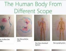 #11 I need a simple HTML5 Body model részére AhmedMShehatah által