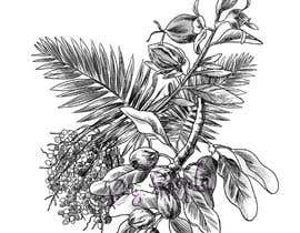 #19 untuk £100 for a Black and White hand or computer drawn tropical image of leaves, fruits and trees (see attached). oleh wpurple