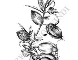 #31 untuk £100 for a Black and White hand or computer drawn tropical image of leaves, fruits and trees (see attached). oleh Indikaprasa