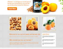 #12 for Graphic Design - Redesign FRONT PAGE Only - apricotseeds.co.nz website af KreativeAgency