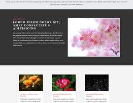 #9 , Very Basic webpage using HTML  -  Four pages 来自 szn5953afb6359a6