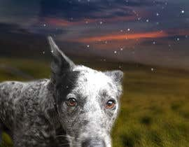 #177 for Enhance Dog Photos; Beautifully, Creatively! af machasibjs
