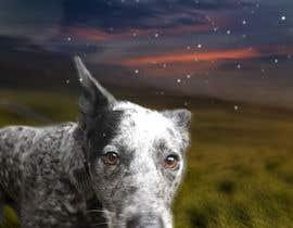 #177 for Enhance Dog Photos; Beautifully, Creatively! by machasibjs