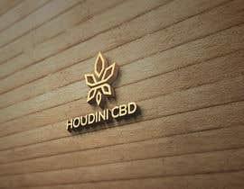 #115 for houdini cbd logo av brandingstyle