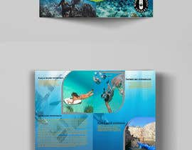 #7 для Bi-fold Flyer for tourist sea activities от raihan1212