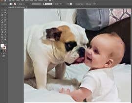 nº 27 pour Improve image clarity par shaheerahmed2021