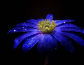 #9 untuk CREATE A GALAXY FLOWER PATTERN oleh retouchmaster01