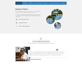 #18 for Web Page redesign af agnitiosoftware