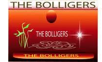 Bài tham dự #12 về Graphic Design cho cuộc thi fruits, nuts and honey wine logo the bolligers