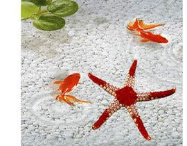 #396 for Design a photo of a star fish by Rezeka