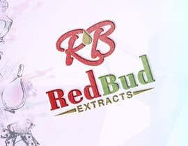 #87 untuk Logo Redisign oleh imtiajcse1
