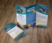 Graphic Design Contest Entry #33 for Design a tri fold brochure for print