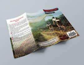 """#18 for Design a Brochure for """"Challenge the Mountain"""" by todtodoroff"""