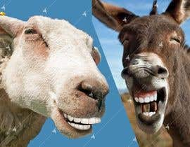 #44 for Photoshop in nice teeth into 2 animal photos (Funny picture required) by Awal01