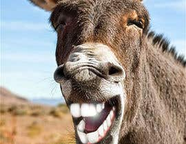 #35 for Photoshop in nice teeth into 2 animal photos (Funny picture required) by EfraimVF