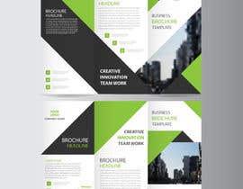 Nro 9 kilpailuun Build Brochure and Presentation käyttäjältä shohidulrubd