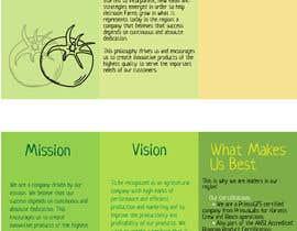 katiatsts tarafından Design a brochure için no 3