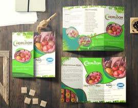 Eng3mr645 tarafından Design a brochure için no 10