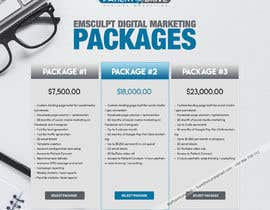 #12 for Flyer Design - Digital Marketing Package Comparison by howthesun