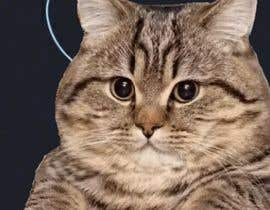 #8 cho Arrange a 90 sec rock/metal/electronic song fragment bởi tonydanza