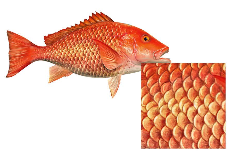 Konkurrenceindlæg #12 for I'm looking for a digital artist who can draw detailed fish scales