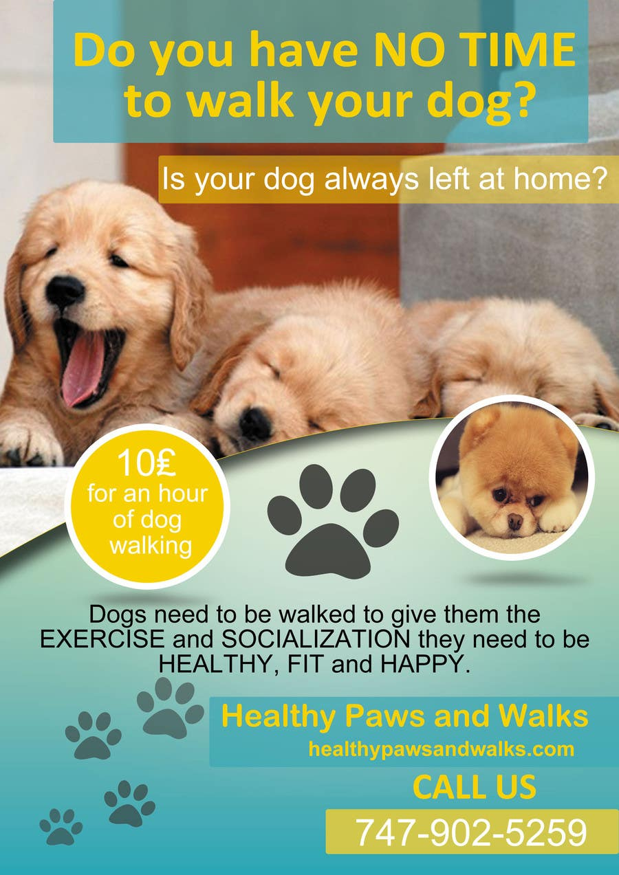 design a flyer for dog walking business lancer 20 for design a flyer for dog walking business by dionfernandes