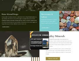 Nro 3 kilpailuun Graphic Design for a Website käyttäjältä janmagn