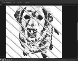 Almamunreo tarafından transform a photo into a graphic image için no 41