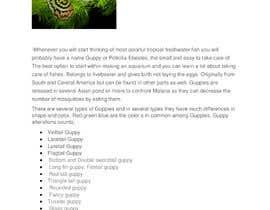 #13 for Copywrite job. Perfect, unique blog content. by shayansaleem57