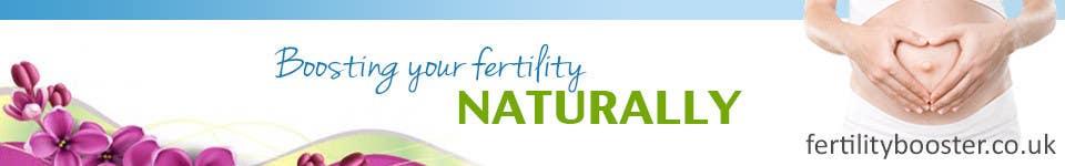 Konkurrenceindlæg #                                        11                                      for                                         Banner Ad Design for Fertility Blog