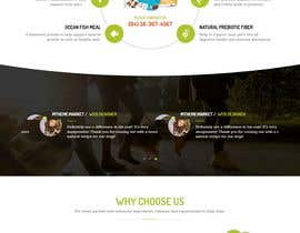 #5 for Homepage design for Wordpress site using Storefront theme by MWaqar123
