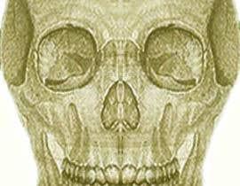 #5 for Skullhead Marie by mathsjonah
