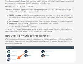 Nro 4 kilpailuun Need to add DNS domain records into cpanel käyttäjältä blui88