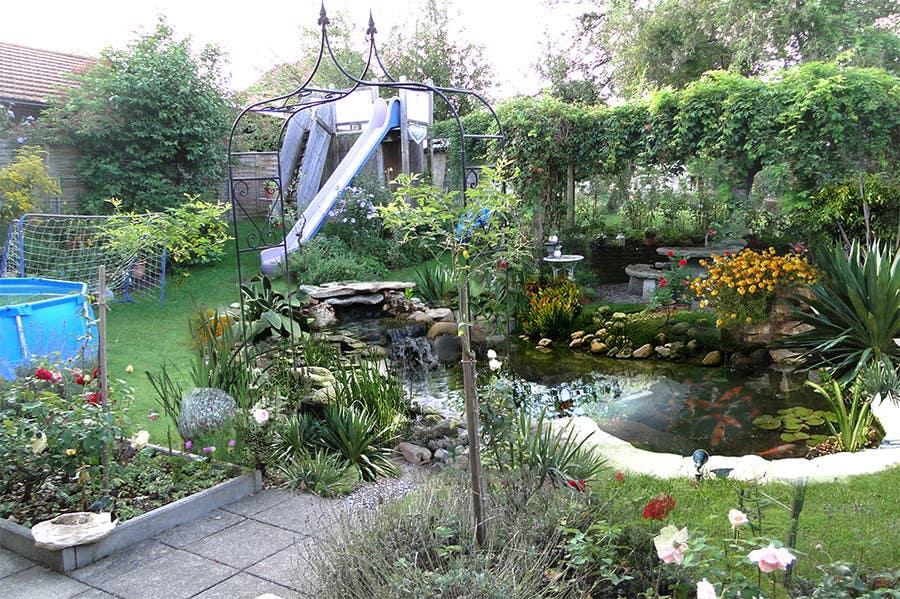 Contest Entry #                                        6                                      for                                         Illustration Design for koi pond and garden