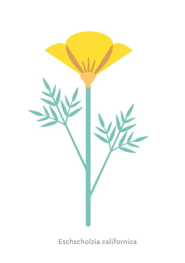 Contest Entry #                                        74                                      for                                         Vector Flower Icons
