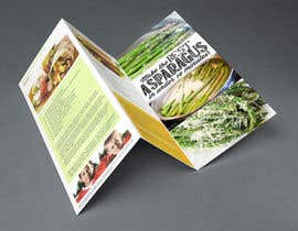 #3 for Design a ROll Fold Brochure af jawidraiz