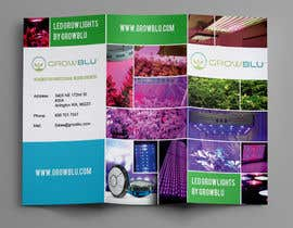 #14 for Trifold Product Brochure for LED Company af Olekiy