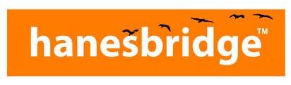 Konkurrenceindlæg #                                        27                                      for                                         Modify a Logo for hanesbridge