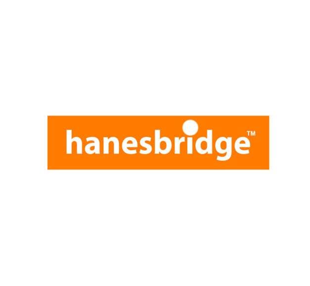 Inscrição nº 37 do Concurso para Modify a Logo for hanesbridge